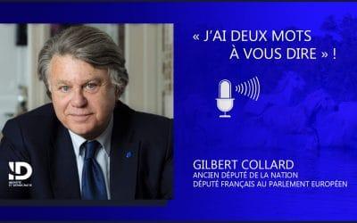 Restitution des biens culturels : la « cancel culture » dépouille la France de son patrimoine !